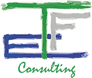 TFE Consulting Logo